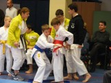 Hinode_karate_fujinaga_2014_019