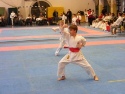 Hinode_karate_fujinaga_2014_021