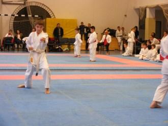 Hinode_karate_fujinaga_2014_023