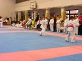 Hinode_karate_fujinaga_2014_024
