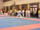 Hinode_karate_fujinaga_2014_030