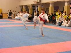 Hinode_karate_fujinaga_2014_033