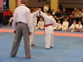 Hinode_karate_fujinaga_2014_036