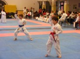 Hinode_karate_fujinaga_2014_038