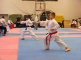 Hinode_karate_fujinaga_2014_040