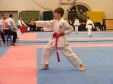 Hinode_karate_fujinaga_2014_041
