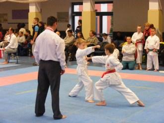 Hinode_karate_fujinaga_2014_046
