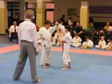 Hinode_karate_fujinaga_2014_047