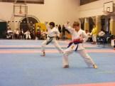 Hinode_karate_fujinaga_2014_052