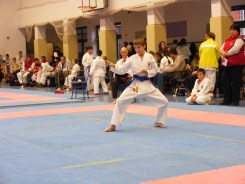 Hinode_karate_fujinaga_2014_055