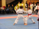 Hinode_karate_fujinaga_2014_061