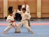 Hinode_karate_fujinaga_2014_071
