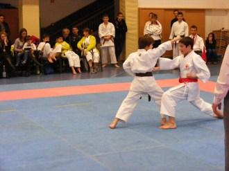 Hinode_karate_fujinaga_2014_079