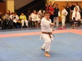 Hinode_karate_fujinaga_2014_081
