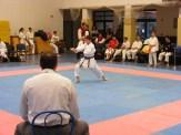Hinode_karate_fujinaga_2014_083