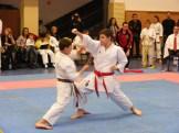 Hinode_karate_fujinaga_2014_085