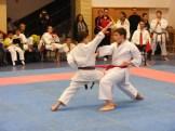 Hinode_karate_fujinaga_2014_086