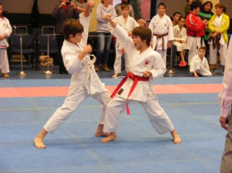 Hinode_karate_fujinaga_2014_087