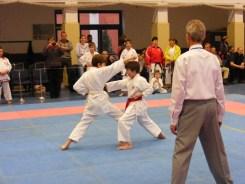 Hinode_karate_fujinaga_2014_088
