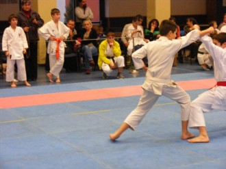 Hinode_karate_fujinaga_2014_090