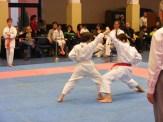 Hinode_karate_fujinaga_2014_093