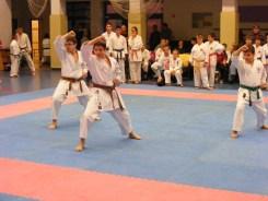 Hinode_karate_fujinaga_2014_100