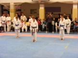 Hinode_karate_fujinaga_2014_102
