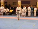 Hinode_karate_fujinaga_2014_104