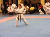 Hinode_karate_fujinaga_2014_106