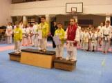 Hinode_karate_fujinaga_2014_113