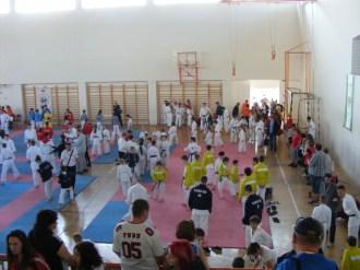 hinode_karate_diakolimpia_2015_01