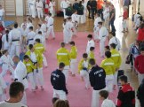 hinode_karate_diakolimpia_2015_03