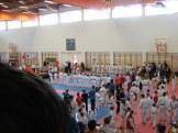 hinode_karate_diakolimpia_2015_07