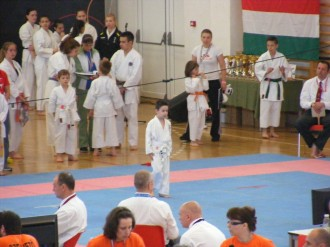 hinode_karate_diakolimpia_2015_12