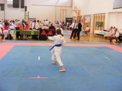 hinode_karate_diakolimpia_2015_21