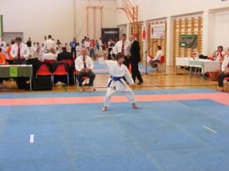 hinode_karate_diakolimpia_2015_23