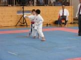 hinode_karate_diakolimpia_2015_29