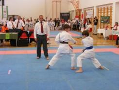 hinode_karate_diakolimpia_2015_32