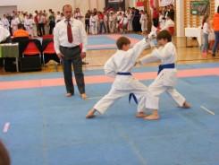 hinode_karate_diakolimpia_2015_33
