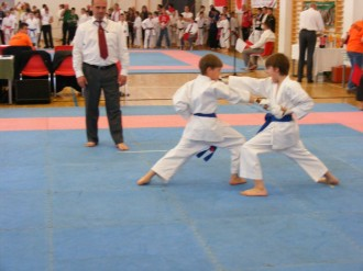 hinode_karate_diakolimpia_2015_34