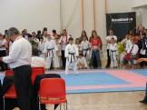 hinode_karate_diakolimpia_2015_35