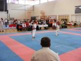 hinode_karate_diakolimpia_2015_36