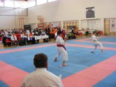 hinode_karate_diakolimpia_2015_37