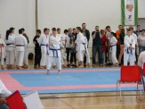 hinode_karate_diakolimpia_2015_38