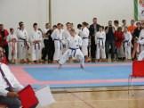 hinode_karate_diakolimpia_2015_39