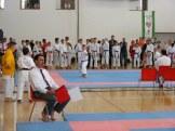 hinode_karate_diakolimpia_2015_40