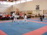 hinode_karate_diakolimpia_2015_41