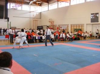 hinode_karate_diakolimpia_2015_42