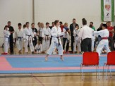 hinode_karate_diakolimpia_2015_48