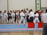 hinode_karate_diakolimpia_2015_49